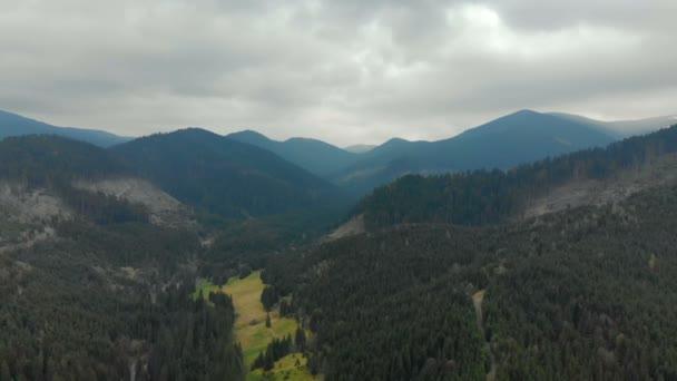 Zamlžené lesní hory po dešti z pohledu ptactva