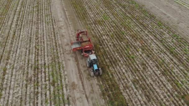 Harvesting of root crops trailed potato harvester with sorter on Board