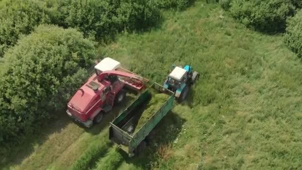 Mähdrescher mäht im Sommer bei sonnigem Wetter Gras für Silage im Traktoranhänger