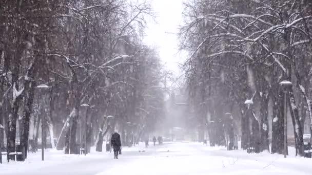 Sníh ve městě, lidí, kteří jdou na zasněžené vozovce. Blizzard, sněhová bouře