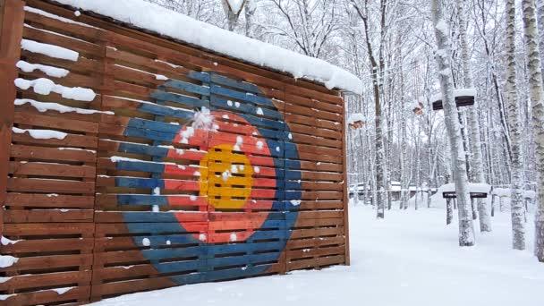 Kinder spielen im Winter Schneebälle, sie versuchen, ins bunte Tor zu kommen