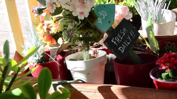 k označení čerstvé denně na květiny