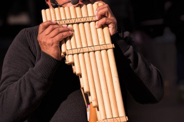 pan flute player performing on stage