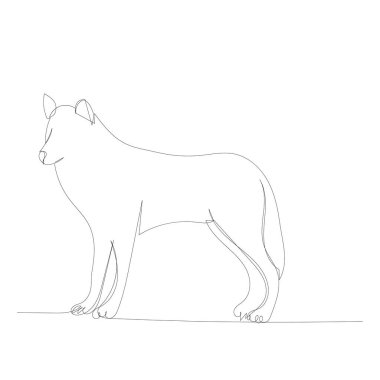 vector, isolated, continuous line drawing of a female wolf