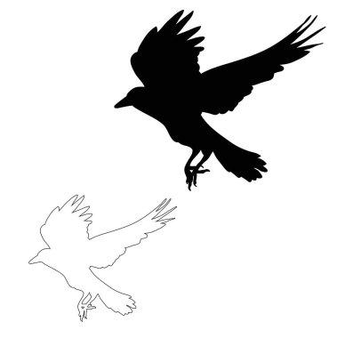 """Картина, постер, плакат, фотообои """"векторный силуэт вороновых мух """", артикул 384361400"""