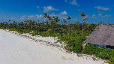 Paradise tropical island Zanzibar beach aerial view
