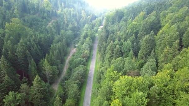 schöne Luftaufnahme von grünen Hügeln und Tälern. Natur des Bieszczady-Gebirges von oben gesehen.