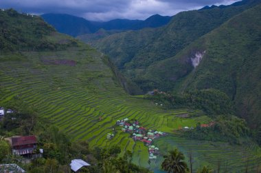 View of rice terraces fields in Banaue, Philippines. The Banaue rice terraces are UNESCO world heritage site since 1995
