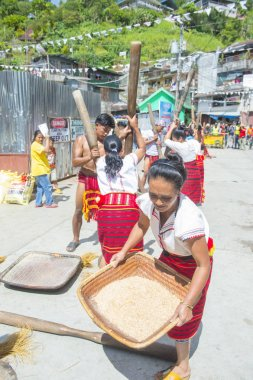 BANAUE, PHILIPPINES - April 30 : People from Ifugao Minority in a rice pounding competion during Imbayah festival in Banaue the Philippines on April 30 2018.