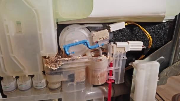 Innenansicht einer verkalkten Geschirrspülmaschine