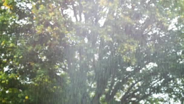 A view of torrential rain shower
