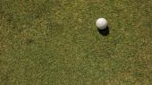 pohled shora na bílý golfový míček na zeleném trávníku, zblízka