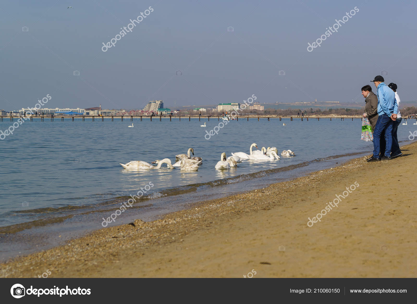 Anapa Krasnodar Krai Russia March 2017 Citizens Fed Beach Wintering Stock Editorial Photo C Garmashevanatali 210060150