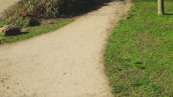 Mladý muž na kole časného rána během krásného teplého úsvitu v městském parku. Zdravý životní styl. Aktivita cvičení