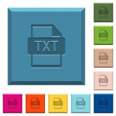 Fotografie TXT file format engraved icons on edged square buttons in various trendy colors