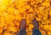 Männerbeine mit Jeans und braunen Schuhen stehen in orangefarbenem Ahorn.