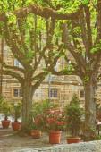 Fotografie Dekoration mit Blumen in die Blumenbeete und Bäume in der Stadt Zentrum alt Bamberg im oberen Franken, Bayern, Deutschland. Es heißt auch Alte Hofhaltung. Getönten