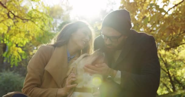 Portrait shot of lovely couple sitting and gently caressing their labrador in the park in beautiful fall. Sunlight. Outdoor. Close up