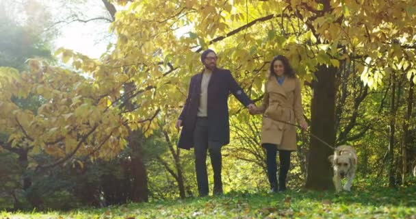 Lovely young couple holding hand in hand and walking a dog on the leash in beautiful park in the autumn morning. Outdoors
