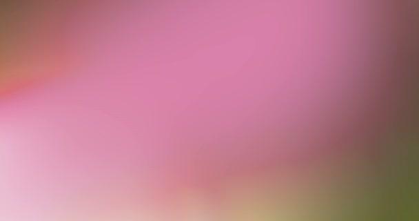 abstraktní multi barevné světelné impulsy a záře úniky pohybu pozadí, rozostření bokeh