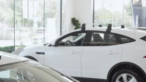 Happy female customer smiling to the camera while choosing new car to buy