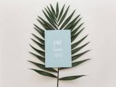 Fotografia Composizione in estate Appartamento laici. Scheda di foglia e invito tropicale concetto creativo. Vista dallalto, lo spazio della copia
