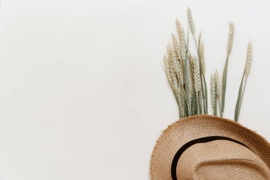 Flat lay summer composition. Creative concept straw hat and ears of wheat. Top view, copy space