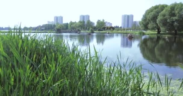 Rybník s dřevěnými domy pro kachny