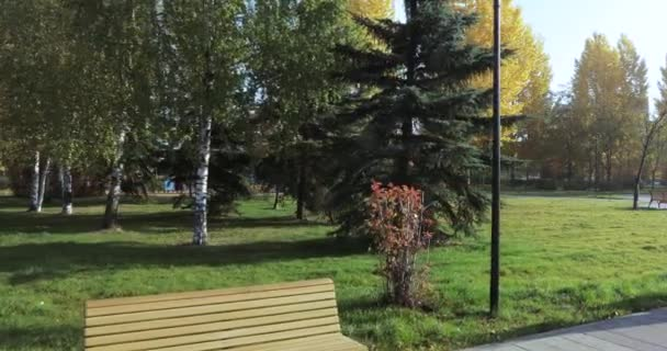 A number of benches in the park