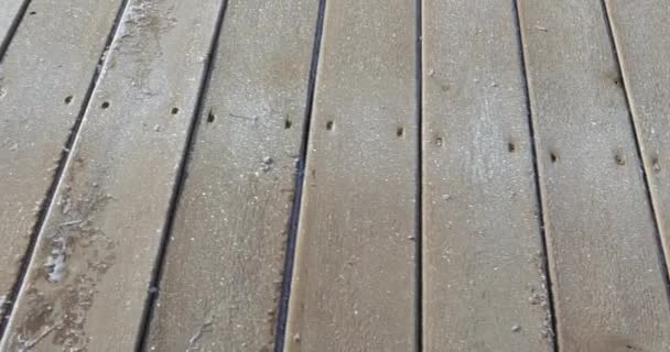 Frost on wooden boards