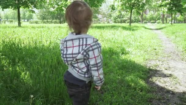 The boy walks in the park
