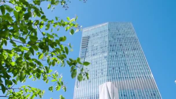 A leaf and building. Stock. Modern office building through the leaves of a tree. Business and nature concept
