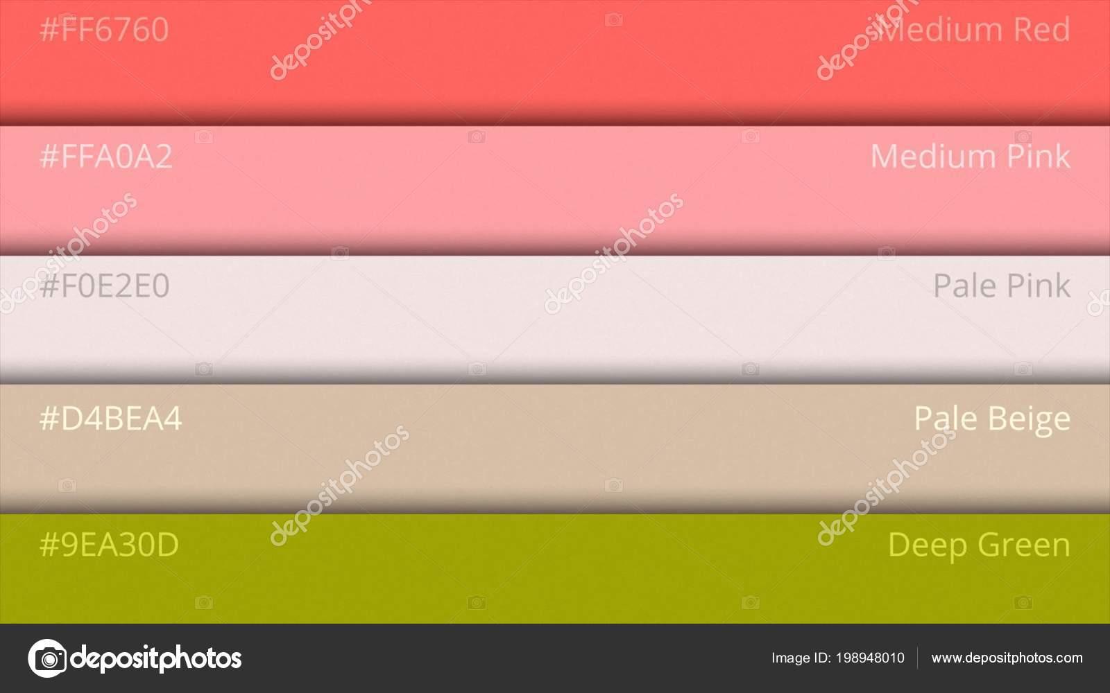 Color Palette Guide. Web colors. Sample Colors Catalog. selection of ...