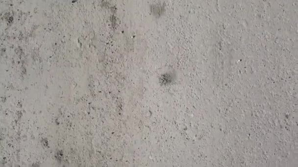 Povrch asfalt, bezešvých textur, chodník. Zem. Asfalt silniční textury. Klip