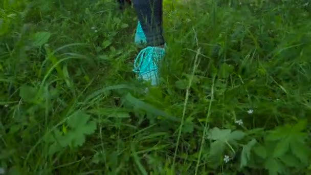 Womens feet walking on the grass in sneakers. Stock. Outdoor sports on a summer day