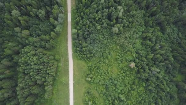 Silnice procházející lesní a skalní útvary. Klip. Pohled shora na silnici poblíž lesa za slunečného dne