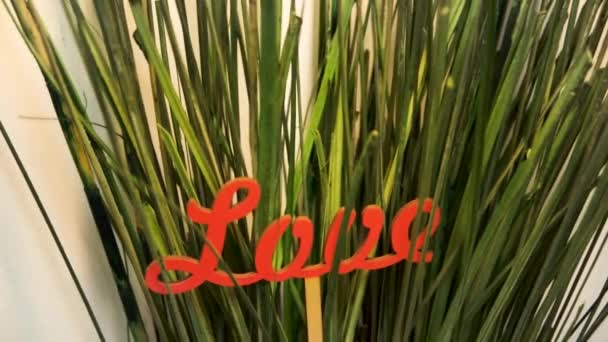 Word LOVE collected from red letters in green grass close-up