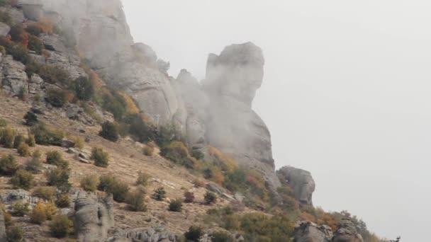 Fantastická krajina horského lesa v mraky, mlha nebo mlžný opar. Střela. Rusko. Mlhavé podzimní horské mírného les s stromy rostoucí na skalách. Mlha v údolí, hory, výhled z hory