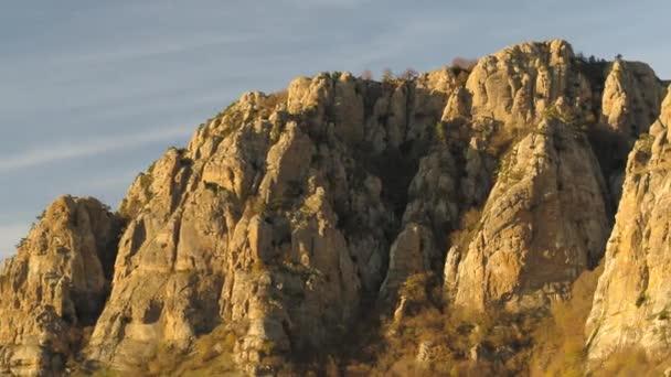 Edelweiß auf Fels in der Abendsonne in den Alpen als Panorama. Schuss. Berchtesgadener Felsenlandschaft. Bergfelsen auf Bergtal. Bergtal Felsblick. Sonne geht über dem Tal unter