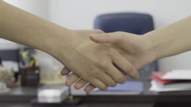 Detailní záběr pro podnikání žen, partneři handshaking na office nábytku pozadí. Detailní záběr pro ženy elegantní handshake v kanceláři, koncept dohody.