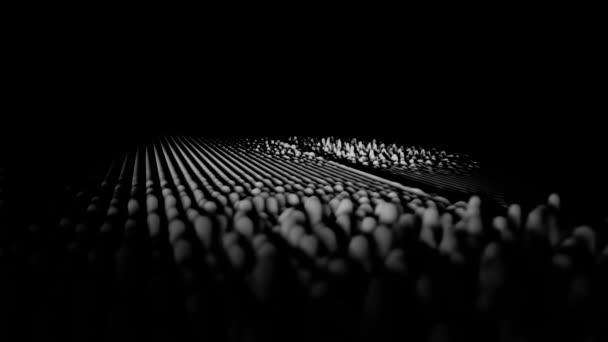 Linee dellonda ritmo astratto, bianco e nero su sfondo nero. Bianco e nero equalizzatore vibrazioni onde sonore.