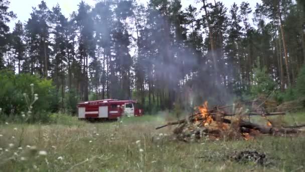 Dvě červené hasičské vozy s blikající světla blíží lesní uhasit hořící oheň. Scénu. Hasiči auta na zelené louce s opuštěné hranici, koncepce prevence a řízení palby lesní