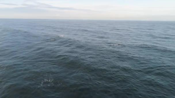 Krajina s tmavě modré moře s malými vlnami, horizont a zamračená obloha. Střela. Anténa pro klidné moře či oceánu s vlnky, přírodní pozadí.