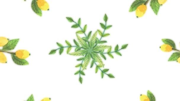 Květinové pozadí opakování animace. Květiny věnec bílé pozadí. Animace z barevných květin