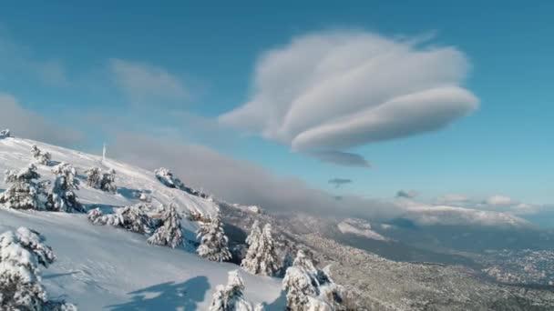 Letecká nadjezdu Sunny zasněžené hory horní Sněžná Evergreen lesa. Střela. Letecký pohled na stromů stíny v zasněžené hory