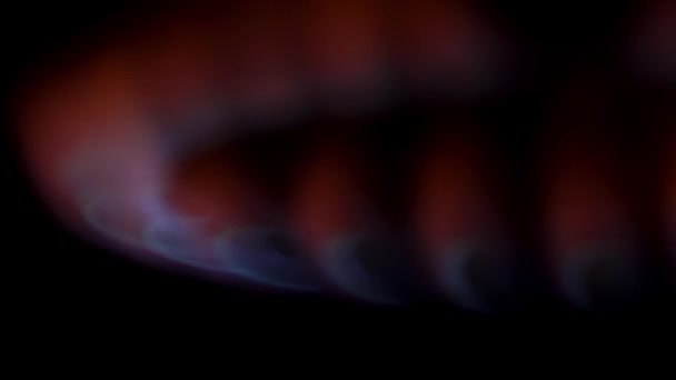 Close up for natural gas burns on the kitchen stove in the dark. Media. Red and blue flame of gas burner, cooking concept.