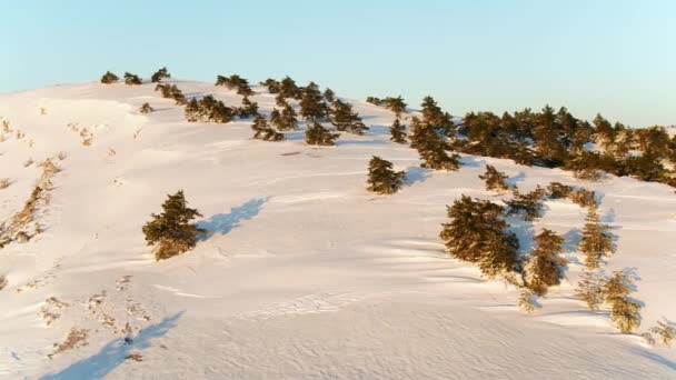 Winter Landscape with Stone Rock Covered with Snow. Shot. Top view of the snow-covered hill in the forest