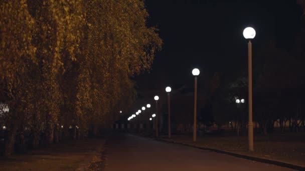 Leere Straße in der Nacht im Licht der Straßenlaterne. Archivmaterial. Straßenlaternen beleuchten Bäume und Gehweg.