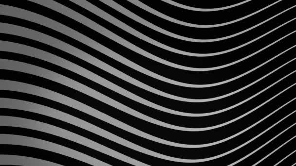 Grafické pozadí proudících čar v dynamickém vlnním pohybu bílé na černé, bezešvé smyčce. Animace. Monochromatické vlny proudí donekonečna zprava doleva.