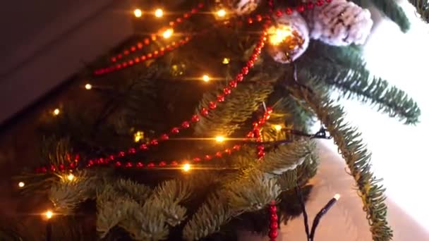 Close-up of branch of Christmas tree with garland. Frame. Branches of Christmas tree are decorated with garland, beads and snow cones on background of simple home environment